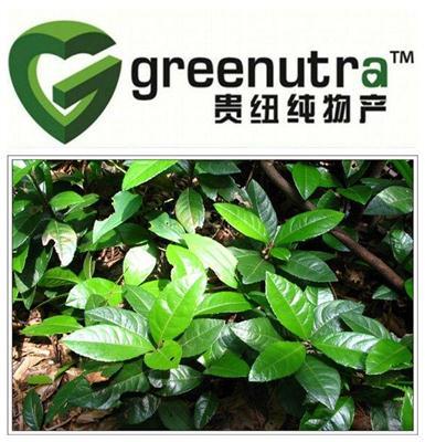 Herbal Tea Formula Powder