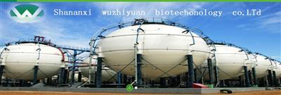 Methylpropyl sulfide best price