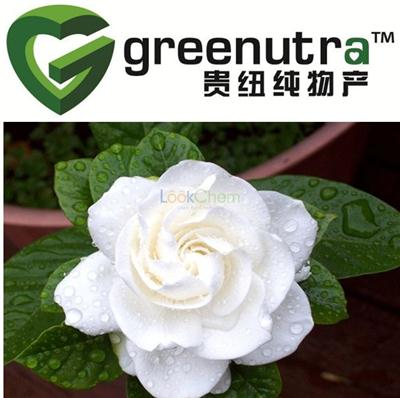 Gardenia Extract powder