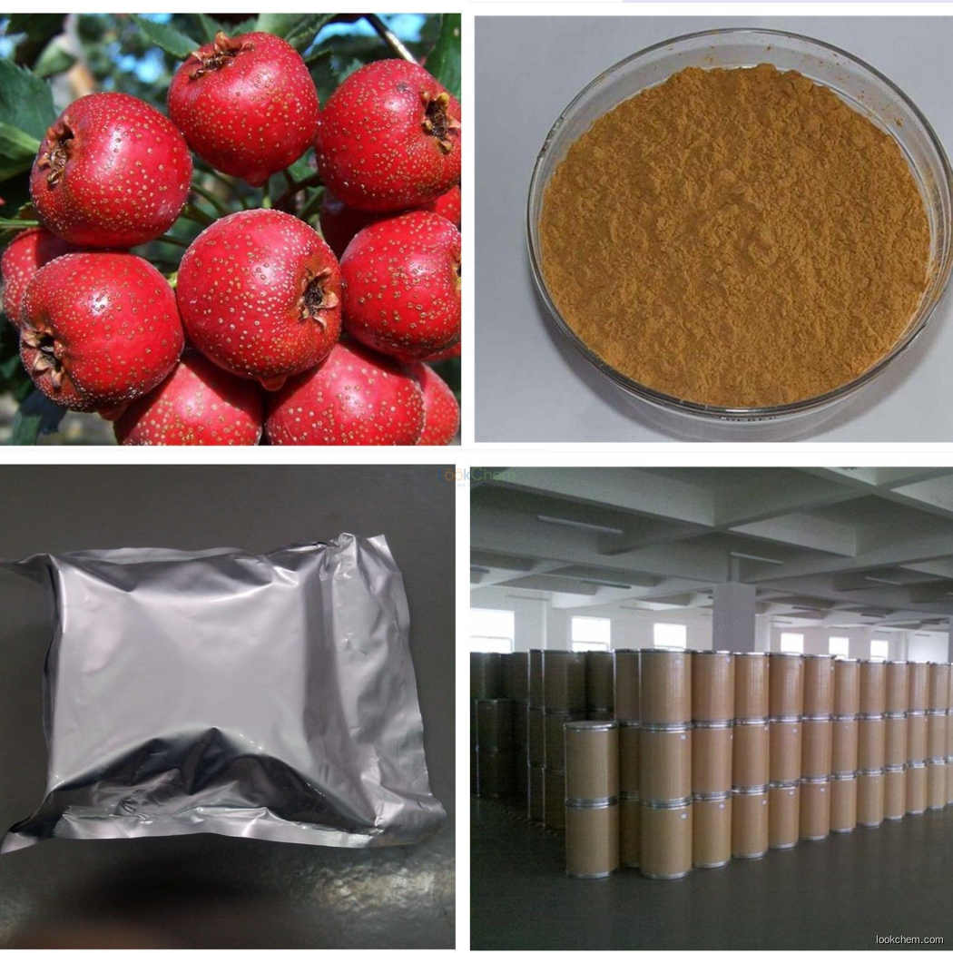 Supply high quality factory price of Hawthom fruit extract