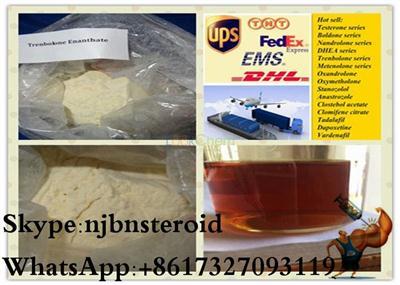 Anabolic Steroid Hormone Trenbolone Steroids Powder Trenbolone Acetate(10161-34-9)