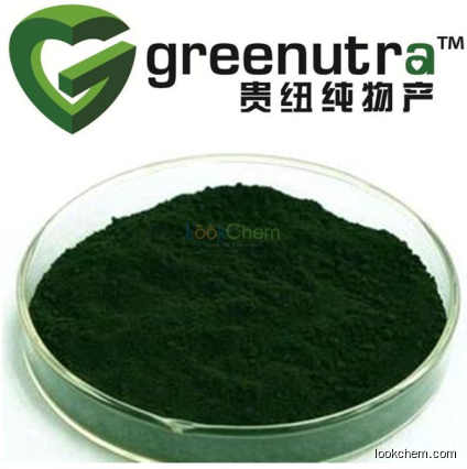 High quality chlorophyll powder