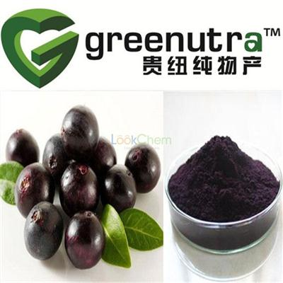 pure natural acai berry extract powder