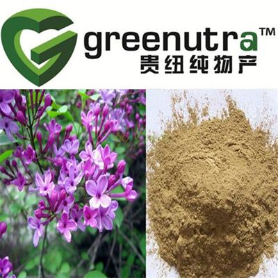 High Quality Clove Extract