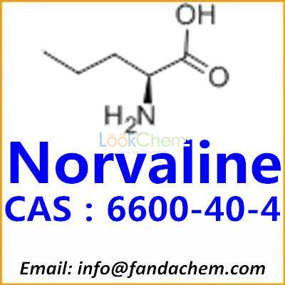 High quality of L(+)-Norvaline, CAS:6600-40-4 from Fandachem