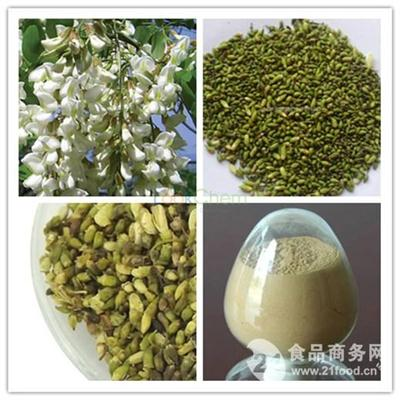 Factory supply Sophora Japonica extract / Sophora Japonica extract / Rutin 98%