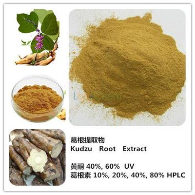 High quality Kudzu root extract 40% Puerarin by HPLC