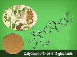 Calycosin-7-O-beta-D-glucoside CAS:20633-67-4(20633-67-4)