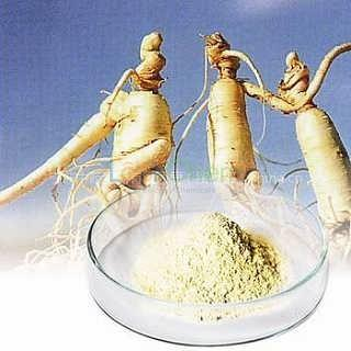 High quality ginseng extract powder ginsenosides 80%