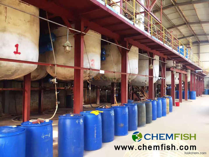 Boric acid factory