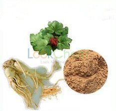 salvia extract 99.9% Purity.High Quality,Lower Price