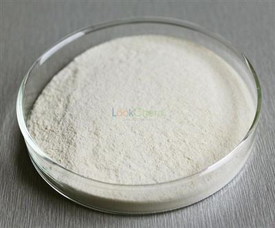 Factory price Top Quality Food Grade Enzyme Bromelain