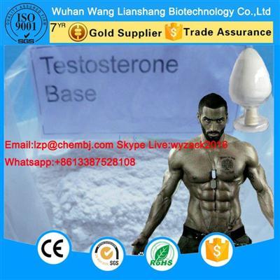 Bodybuilding Testosterone Base CAS 58-22-0 Raw Steroid Powder 99% Purity Z
