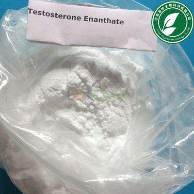 Injection 99% Purity Steroids Hormone Testosterone Enanthate for Muscle Mass