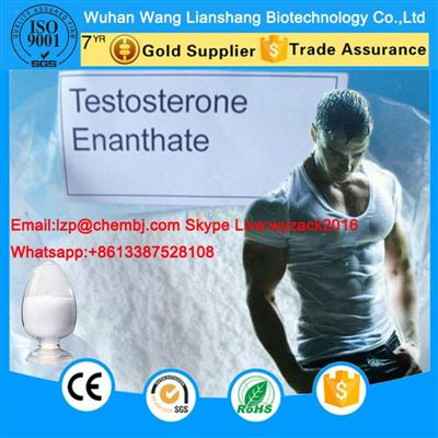 High quality Testosterone Enanthate Steroids Powder For Bodybuilding  315-37-7 Z