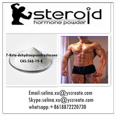 CAS:566-19-8  High Quality and Best Price Steroid Hormone Powder 7-Keto-dehydroepiandrosterone