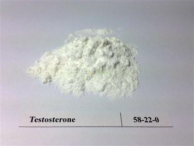 Testosterone Base/Testosterone Basis/Testosterone