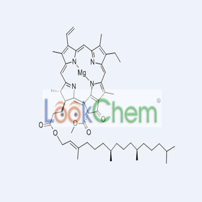479-61-8  Chlorophyll A