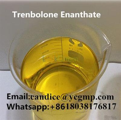 Test E Increased Muscle Anabolic Steroid Testosterone Enanthate inject 250