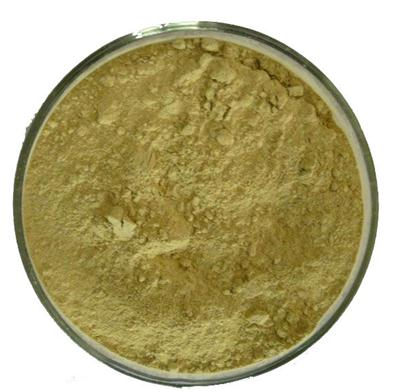 CAS: 61788-66-7 Saw Palmetto Fruit Extract