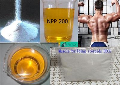 Hormone Drug Powder Androstadienedione (ANDROSTA-1, 4-DIENE-3, 17-DIONE) CAS: 897-06-3 T