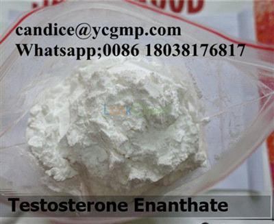 Glucocorticoid Anti Inflammatory Cortisone Acetate