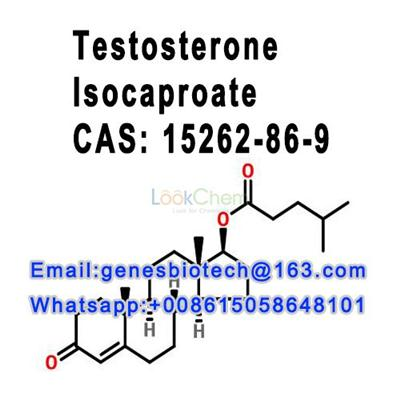 Testosterone Isocaproate CAS 15262-86-9