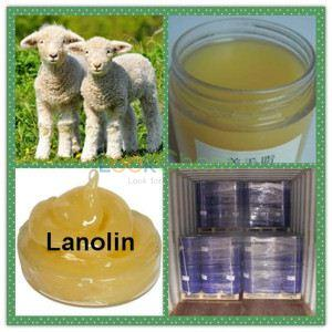 High Quality Anhydrous Lanolin CAS 8006-54-0