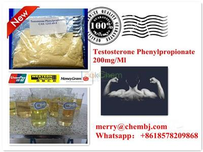 Natural Anabolic Steroid Testosterone Phenylpropionate
