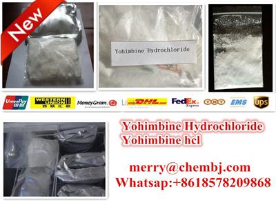 Yohimbine Hydrochloride with Fast Delivery/ Best Price 65-19-0