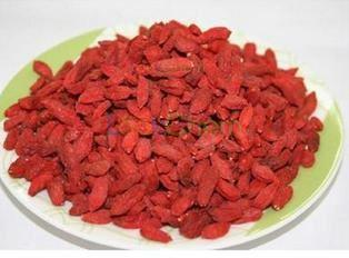 Good Quality Wolfberry Extract