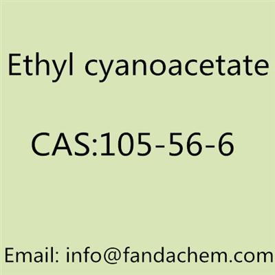 Ethyl cyanoacetate cas no: 105-56-6