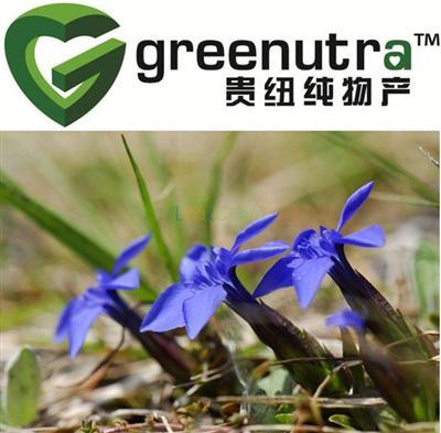 100%natural Long Dan Cao Extract,Manufacturer Long Dan Cao Extract,Manufacturer Supply High Quality Long Dan Cao Extract