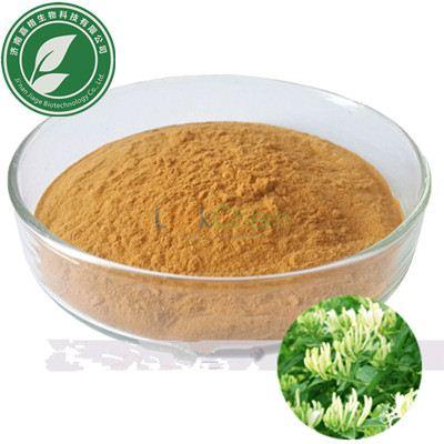Natural Plant Extract pharma Grade 6% Chlorogenic Acid for antioxidant