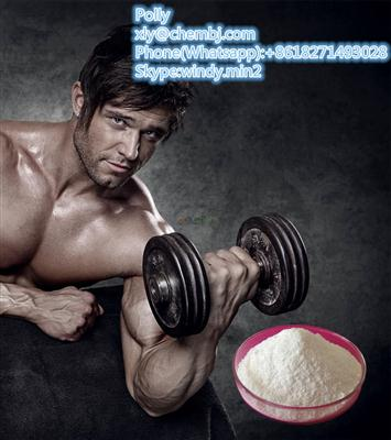 Bodybuilding Anabolic Steroid Powder Dehydroisoandrosterone/DHEA on Sell