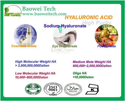 Sodium hyaluronate Manufacturer/High quality/Best price/In stock CAS NO.9067-32-7