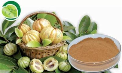 Garcinia Cambogia Extract (HCA)