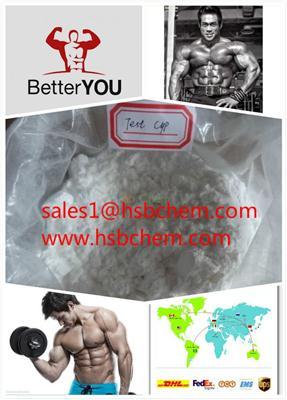 Testosterone cypionate Raw Steroid Powders,USP 99%