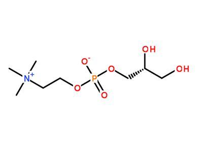 L-A-glycerophosphorylcholine