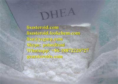 Want Dehydroepiandrosterone write to Lisa