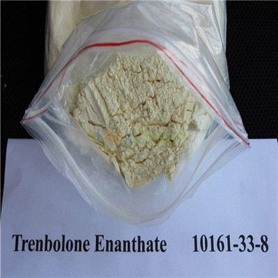 Anabolic Injection Steroids Raw Tren Powder Trenbolone Enanthate CAS 10161-33-8 Bodybuilding