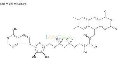 Flavin adenine dinucleotide   146-14-5