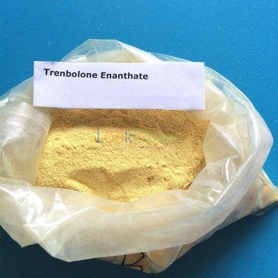 Trenbolone Enanthate Tren E TRE for Bodybuilding