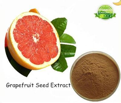 100% Natural Sweetener Naringin Dihydrochalcone in Stock