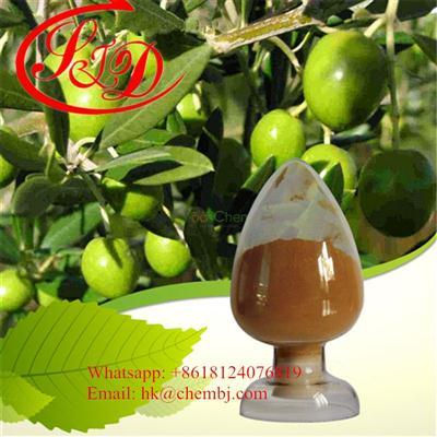 Olive Leaf Extract 10%-90% Hydroxytyrosol and Oleuropein