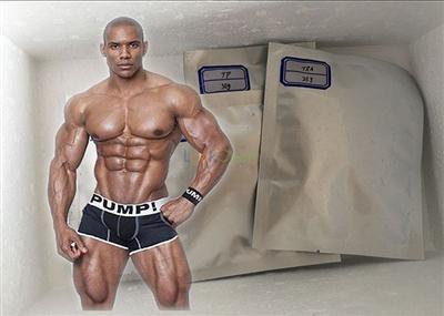 Fitness Testosterone Anabolic Steroid Testosterone Propionate