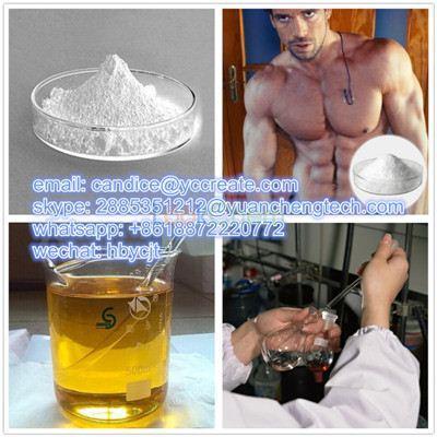 Muscle Building Steroid Powder Sustanon 100 Testosterone Sustanon 100