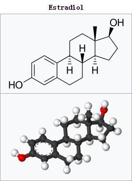 Estradiol (E2)