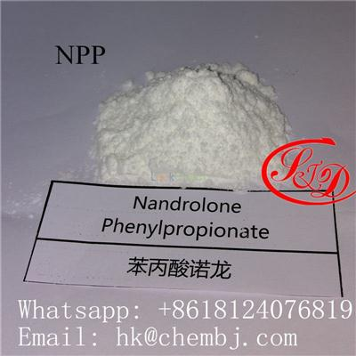 Injectable Anabolic steroids 62-90-8 Npp / Nandrolone Phenylpropionate Durabolin Made In China for muacle building