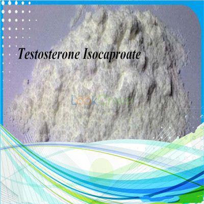 Testosterone isocaproate for bodybuiding